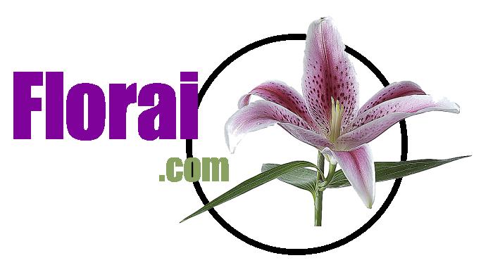 Florai.com